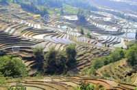 Dalla Provincia dello Yunnan una delegazione cinese a Teramo: interessati a conoscere le colture tipiche e biologiche